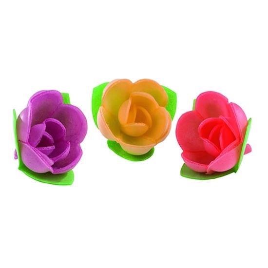 Roses mini-corolle vive