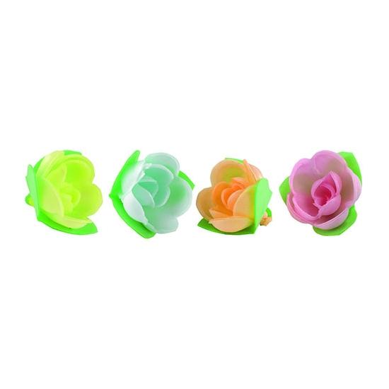 Roses mini-corolle tendre